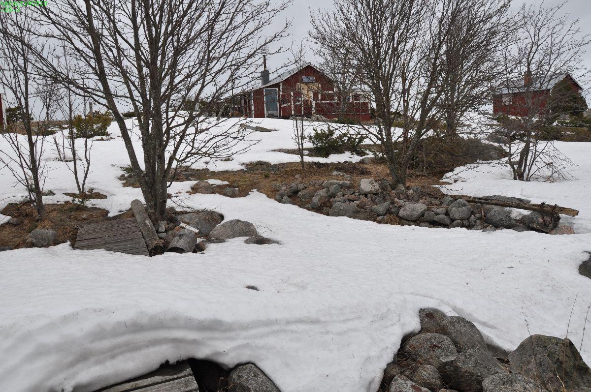 110410 Snön på ön