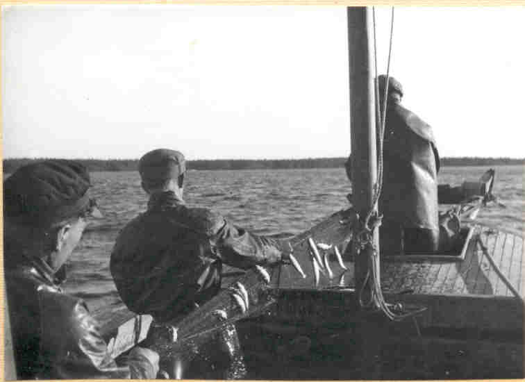 1950Helga07