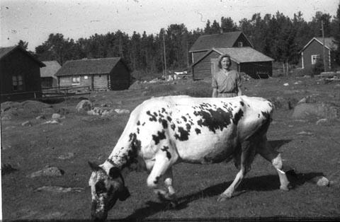 1948JB023